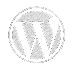 WordPress Fachmann